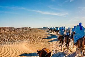 Trekking Tunisie : Randonnée chamelière