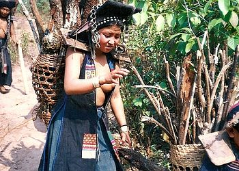 Trekking Laos : Trek au Nord, en pays Akha et Hmong