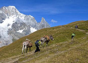 Trekking France : Le Tour du Mont blanc Sud, en famille avec des ânes de St Gervais à Courmayeur.