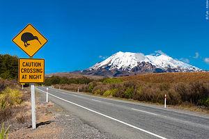 Trekking Nouvelle-Zélande : Randonnées chez les Kiwis