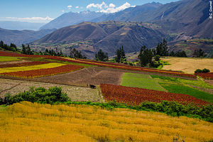 Trekking Pérou : Du Machu Picchu à la Cordillère Blanche